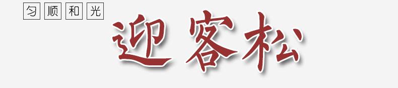 迎客松-(1)_02