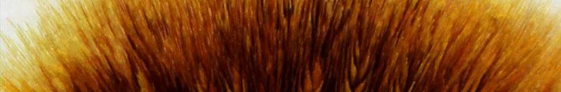 麦穗-(8)_02